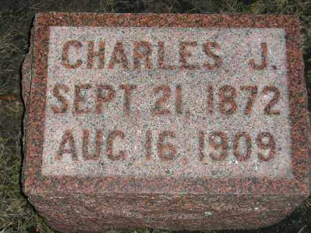 JOHNSON, CHARLES J. - Codington County, South Dakota | CHARLES J. JOHNSON - South Dakota Gravestone Photos