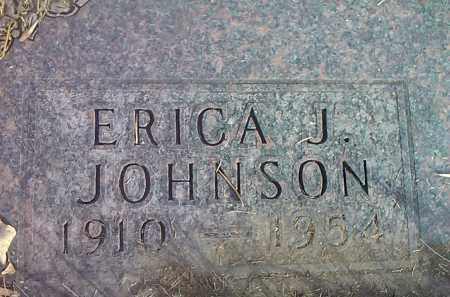 JOHNSON, ERICA J. - Codington County, South Dakota   ERICA J. JOHNSON - South Dakota Gravestone Photos