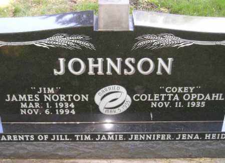 JOHNSON, JAMES NORTON - Codington County, South Dakota | JAMES NORTON JOHNSON - South Dakota Gravestone Photos