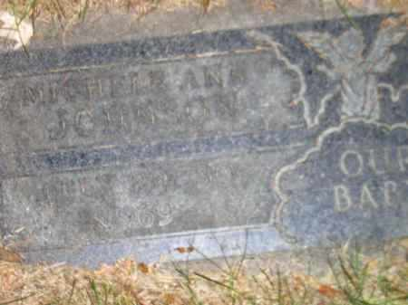 JOHNSON, MICHELE ANN - Codington County, South Dakota | MICHELE ANN JOHNSON - South Dakota Gravestone Photos