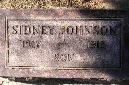 JOHNSON, SIDNEY - Codington County, South Dakota   SIDNEY JOHNSON - South Dakota Gravestone Photos