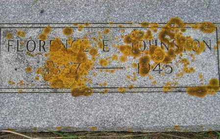 CLEGG JOHNSTON, FLORENCE E. - Codington County, South Dakota | FLORENCE E. CLEGG JOHNSTON - South Dakota Gravestone Photos