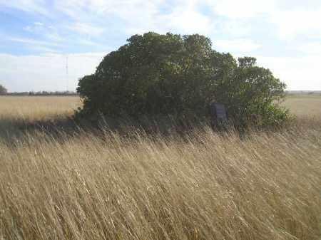 *KLIX, WIDE VIEW - Codington County, South Dakota   WIDE VIEW *KLIX - South Dakota Gravestone Photos