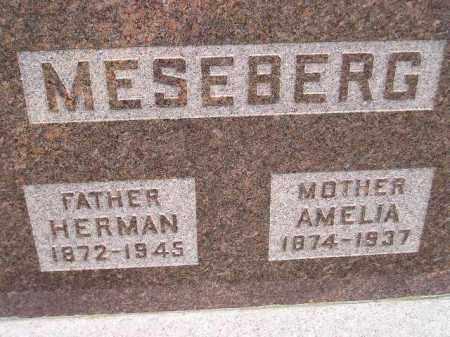 MESEBERG, AMELIA - Codington County, South Dakota | AMELIA MESEBERG - South Dakota Gravestone Photos