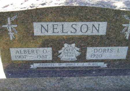 NELSON, ALBERT OTTO - Codington County, South Dakota | ALBERT OTTO NELSON - South Dakota Gravestone Photos