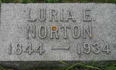DOW NORTON, LURIA ELIZABETH - Codington County, South Dakota | LURIA ELIZABETH DOW NORTON - South Dakota Gravestone Photos