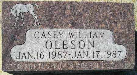 OLESON, CASEY WILLIAM - Codington County, South Dakota | CASEY WILLIAM OLESON - South Dakota Gravestone Photos