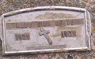 REEVE, BABY GIRL - Codington County, South Dakota | BABY GIRL REEVE - South Dakota Gravestone Photos