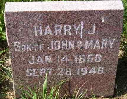 STARKWEATHER, HARRY J. - Codington County, South Dakota   HARRY J. STARKWEATHER - South Dakota Gravestone Photos