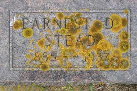 STEAD, EARNEST EDWARD - Codington County, South Dakota | EARNEST EDWARD STEAD - South Dakota Gravestone Photos
