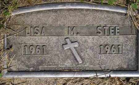 STEE, LISA MARIE - Codington County, South Dakota | LISA MARIE STEE - South Dakota Gravestone Photos