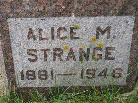 FISHER STRANGE, ALICE MAUD - Codington County, South Dakota | ALICE MAUD FISHER STRANGE - South Dakota Gravestone Photos
