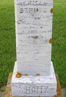 STRUTZ, HERMAN - Codington County, South Dakota   HERMAN STRUTZ - South Dakota Gravestone Photos