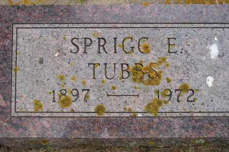 TUBBS, SPRIGG - Codington County, South Dakota | SPRIGG TUBBS - South Dakota Gravestone Photos