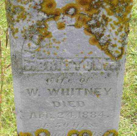 WHITNEY, SARAH ELIZABETH - Codington County, South Dakota | SARAH ELIZABETH WHITNEY - South Dakota Gravestone Photos