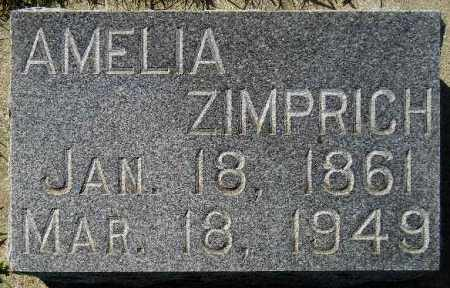 ZIMPRICH, AMELIA - Codington County, South Dakota | AMELIA ZIMPRICH - South Dakota Gravestone Photos