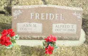 FREIDEL, ALFRED - Davison County, South Dakota | ALFRED FREIDEL - South Dakota Gravestone Photos