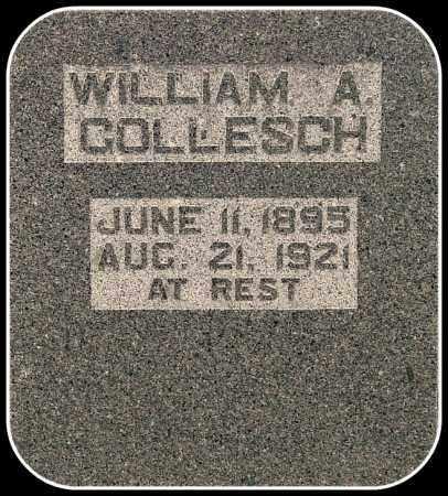 GOLLESCH, WILLIAM A. - Davison County, South Dakota | WILLIAM A. GOLLESCH - South Dakota Gravestone Photos