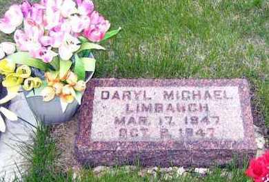 LIMBAUGH, DARYL MICHAEL - Davison County, South Dakota | DARYL MICHAEL LIMBAUGH - South Dakota Gravestone Photos