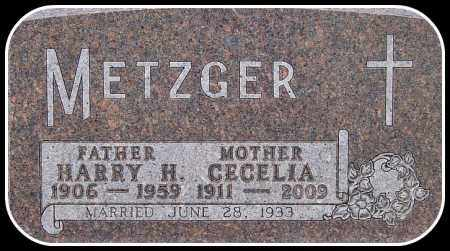 METZGER, CECELIA - Davison County, South Dakota | CECELIA METZGER - South Dakota Gravestone Photos