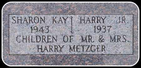 METZGER, HARRY JR. - Davison County, South Dakota | HARRY JR. METZGER - South Dakota Gravestone Photos