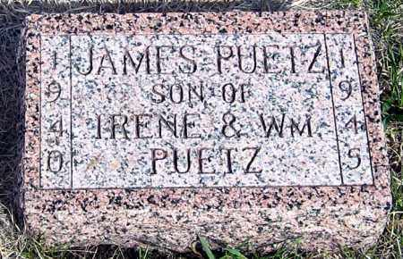 PUETZ, JAMES - Davison County, South Dakota | JAMES PUETZ - South Dakota Gravestone Photos