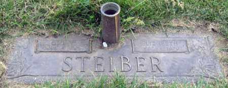 STEIBER, ELIZABETH - Davison County, South Dakota | ELIZABETH STEIBER - South Dakota Gravestone Photos