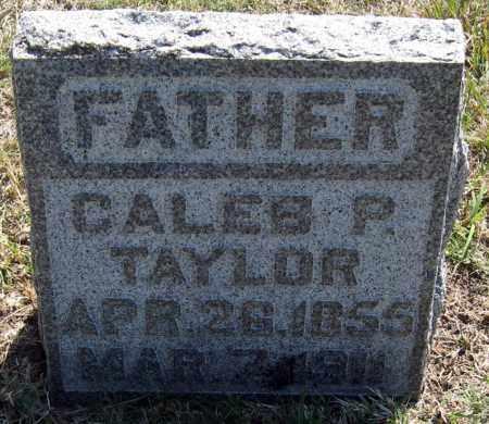 TAYLOR, CALEB - Davison County, South Dakota | CALEB TAYLOR - South Dakota Gravestone Photos