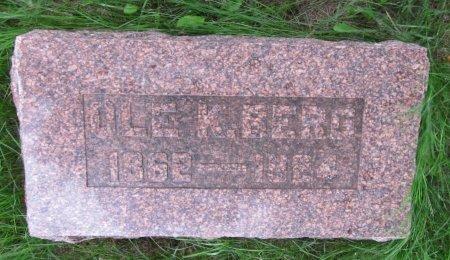 BERG, OLE K. - Day County, South Dakota | OLE K. BERG - South Dakota Gravestone Photos