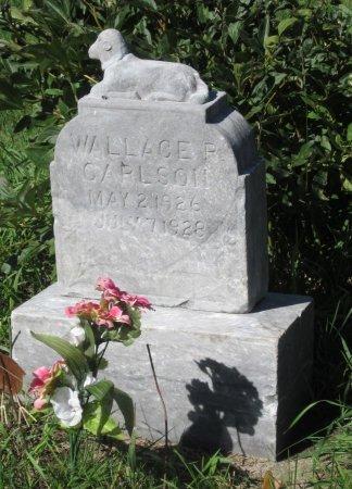 CARLSON, WALLACE R. - Day County, South Dakota   WALLACE R. CARLSON - South Dakota Gravestone Photos