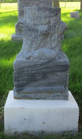 HAWKINSON, ERWIN LEROY - Day County, South Dakota   ERWIN LEROY HAWKINSON - South Dakota Gravestone Photos