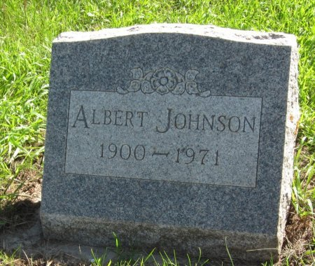 JOHNSON, ALBERT - Day County, South Dakota | ALBERT JOHNSON - South Dakota Gravestone Photos