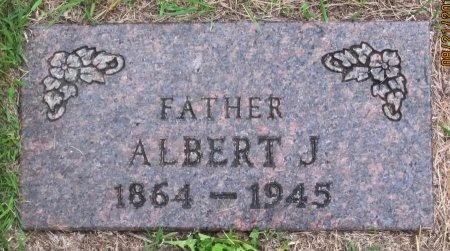 JOHNSON, ALBERT J. - Day County, South Dakota | ALBERT J. JOHNSON - South Dakota Gravestone Photos