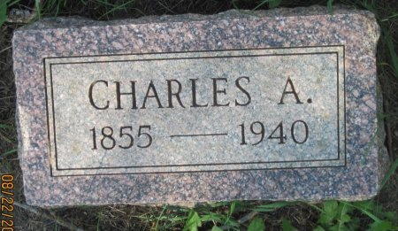 JOHNSON, CHARLES A. - Day County, South Dakota | CHARLES A. JOHNSON - South Dakota Gravestone Photos