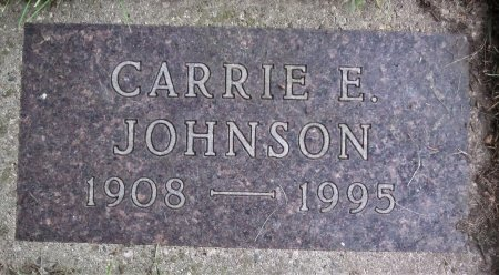 JOHNSON, CARRIE E. - Day County, South Dakota | CARRIE E. JOHNSON - South Dakota Gravestone Photos
