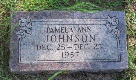 JOHNSON, PAMELA ANN - Day County, South Dakota | PAMELA ANN JOHNSON - South Dakota Gravestone Photos