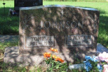 JOHNSON, SYLVIA B. - Day County, South Dakota | SYLVIA B. JOHNSON - South Dakota Gravestone Photos