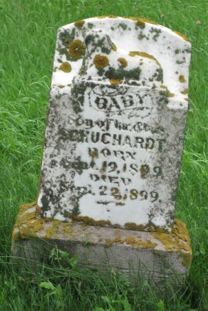 SCHUCHARDT, BABY - Day County, South Dakota | BABY SCHUCHARDT - South Dakota Gravestone Photos