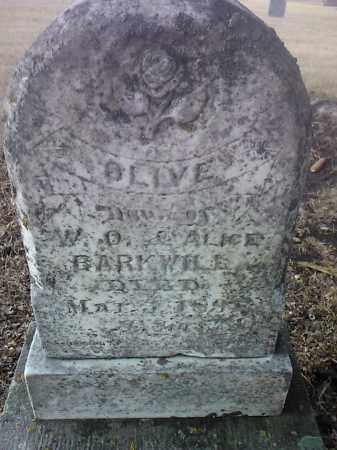 BARKWILL, OLIVE - Deuel County, South Dakota | OLIVE BARKWILL - South Dakota Gravestone Photos