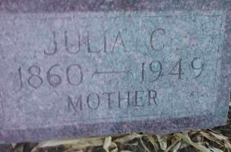 JOHNSON, JULIA C. - Deuel County, South Dakota | JULIA C. JOHNSON - South Dakota Gravestone Photos
