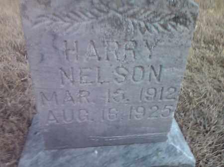 NELSON, HARRY - Deuel County, South Dakota | HARRY NELSON - South Dakota Gravestone Photos