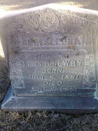 NEWBY, AGENSLEONA - Deuel County, South Dakota | AGENSLEONA NEWBY - South Dakota Gravestone Photos