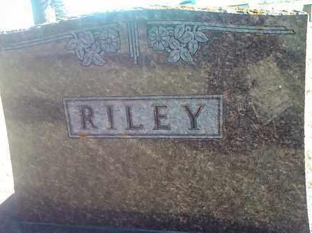 RILEY, FAMILY STONE - Deuel County, South Dakota | FAMILY STONE RILEY - South Dakota Gravestone Photos