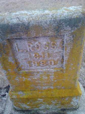 ROSS, L. - Deuel County, South Dakota | L. ROSS - South Dakota Gravestone Photos