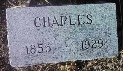SCHAEFER, CHARLES - Deuel County, South Dakota | CHARLES SCHAEFER - South Dakota Gravestone Photos
