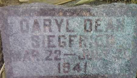 SIEGFRIED, DARYL DEAN - Deuel County, South Dakota | DARYL DEAN SIEGFRIED - South Dakota Gravestone Photos