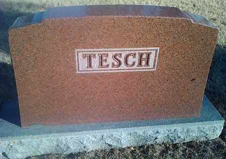 TESCH, FAMILY STONE - Deuel County, South Dakota | FAMILY STONE TESCH - South Dakota Gravestone Photos