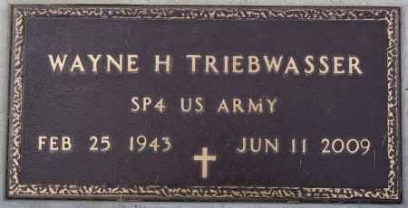 TRIEBWASSER, WAYNE H - Deuel County, South Dakota | WAYNE H TRIEBWASSER - South Dakota Gravestone Photos