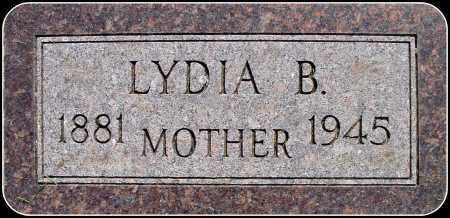 GOLDAMMER, LYDIA B. - Douglas County, South Dakota   LYDIA B. GOLDAMMER - South Dakota Gravestone Photos