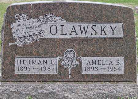 OLAWSKY, HERMAN C. - Douglas County, South Dakota | HERMAN C. OLAWSKY - South Dakota Gravestone Photos